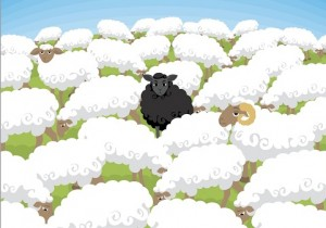 Herd Immunity or Black Sheep